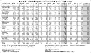 food calorie chart food calorie chart pdf