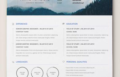format for a resume cv resume portfolio