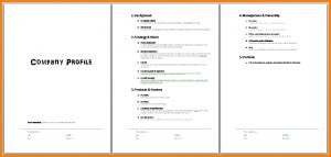 free printable doctors excuse company profile template company profile screenshot