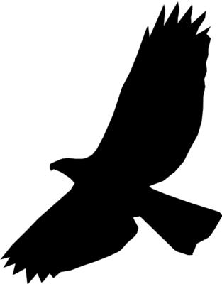 free psd logo
