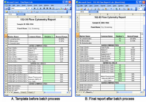free report card template excel reporting templates hmfile hash bbd qhaeqr