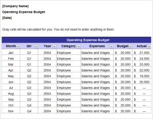 fundraising plan templates annual operating marketing budget plan template