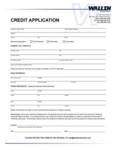 generic job application pdf credit reference form