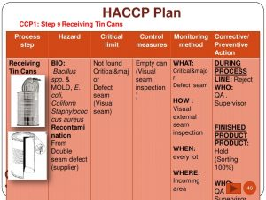 haccp plan template haccp of pineapple canned in syrup