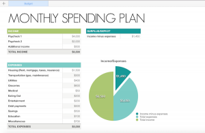 how to make a profit and loss statement organize your finances monthly spending plan