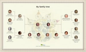 how to make family tree myfamilytree