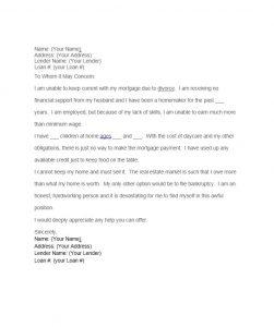 immigration letter of support hardship letter template