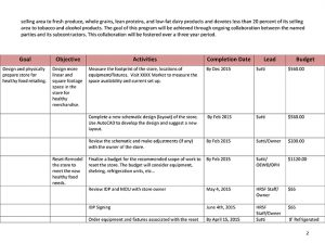 individual development plan template healthy retail idp