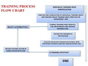 individual development plan template training and development a backward planning approach