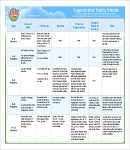 infant feeding schedule infant feeding schedule template by age