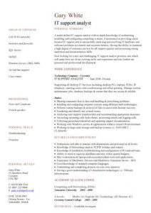 junior web developer resume pic it support analyst cv template