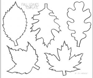 leaf template printable fall leaves printable template by oilandblue