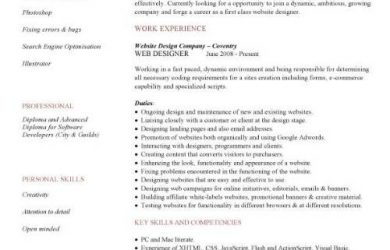 letter of support templates pic web designer cv template
