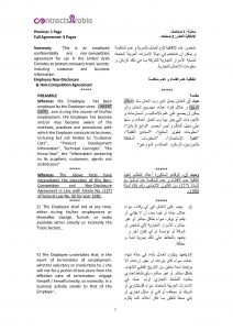 loan agreement pdf page px employee non disclosure agreements uae pdf
