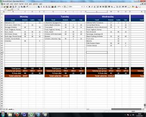 log spreadsheet template food diary