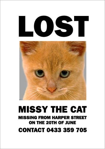 lost cat poster template