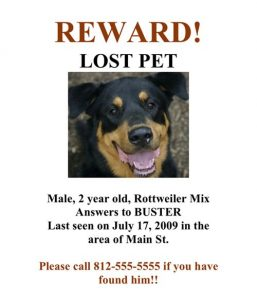 lost dog template aff d bd bab
