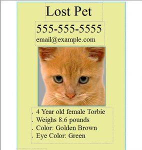 lost pet template pet lost template