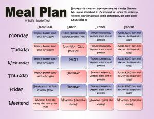 meal plan template word meal plan