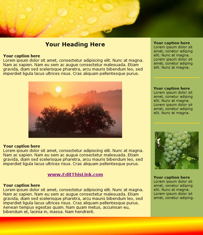 newsletter template free