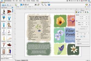 newsletter templates publisher swiftpub big