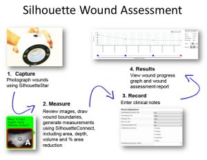 nursing reports templates wound assess