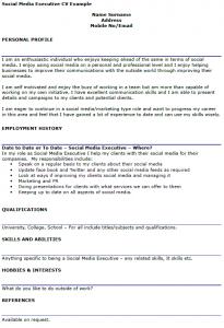offer letter example social media executive cv example