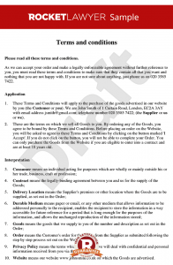 operating agreement sample terms and conditions for sale of goods to consumers via a website
