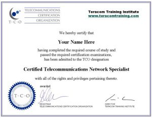 operation manager resume certificate ctns sample