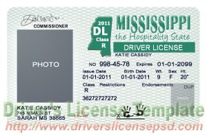 passport photo template psd img cc aec ae bb
