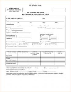pay stub form basic job application form