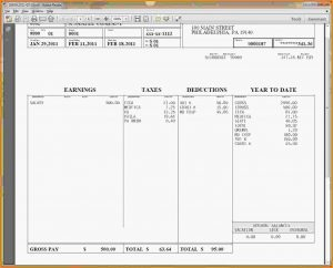 pay stub template free pay stubs template free
