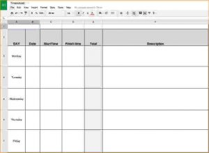 pay stubs template timesheets template timesheet template