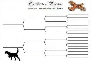 pedigree chart template blank dog pedigree chart template