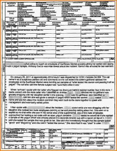 police report example police report example yogurtsample