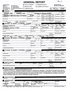 police report example police report template