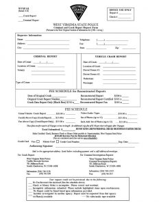 police report sample police report template