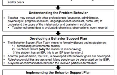 positive behavior support plan orig