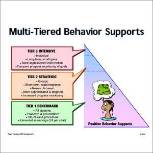 positive behavior support plan positive behaviour support plan template