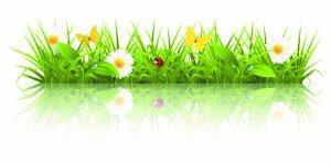 postcard template free free vector spring vector