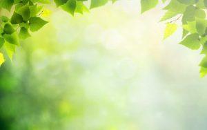 ppt background images background