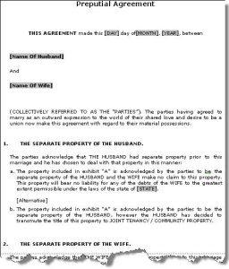 prenup agreement examples prenupsample