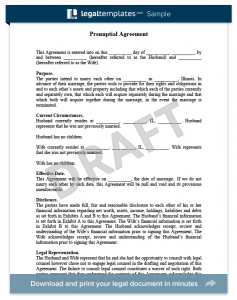 prenup agreement examples prenuptial agreement
