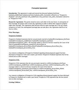 prenuptial agreement template prenuptial agreement template