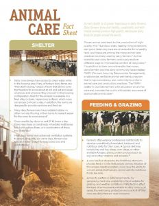 printed newsletter template wda animal care fact sheet lr page x