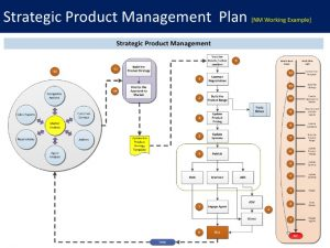 professional development plan sample product commercialization
