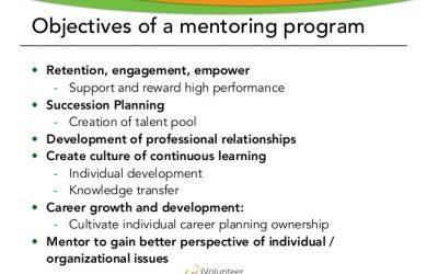 professional development plan samples introducing a volunteer mentoring program part i
