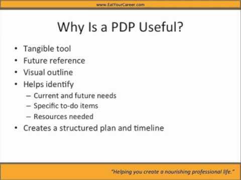 professional development plans example