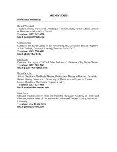 professional reference list template professional references list