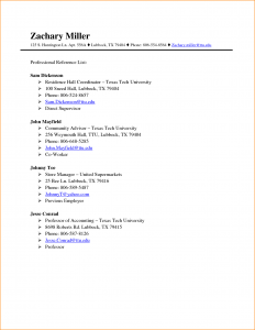 professional reference list template word professional references examples